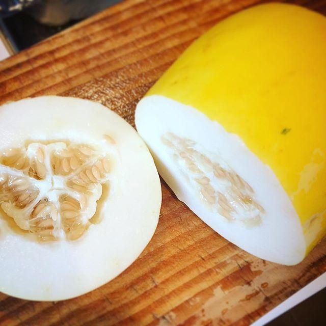 マクワウリ(真桑瓜/まくわうり)が売っていたので、初めて食べてみました。マクワウリはウリ科キュウリ属でメロンの仲間だそうで、本当にメロン食べてるみたいに香りがメロン。ほんのり甘さもあってフルーツのよう。 この品種は黄金マクワのよう。葉の園では、これをピクルスにしてランチの付け合わせに。そのままでもとても美味しいですよ。是非近くで見つけたら食べてみてね。#マクワウリ #採れたて野菜 #ベジボーイ #地元野菜 #おいしいハーブティーのお店 #スープのお店 #葉の園 (Instagram)