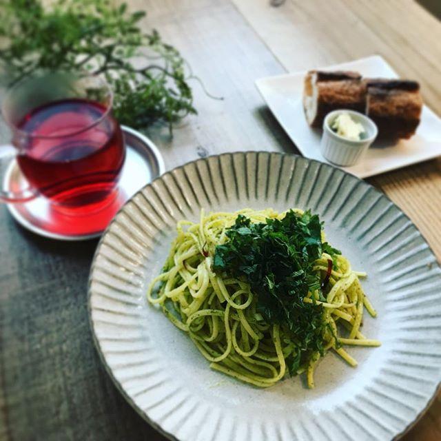阿蘇のグリーンシナモンを使ったパスタ。珍しい国産ハーブです。バジルのようなイメージですが、味は梅紫蘇のような味わい。たっぷりの大葉を乗せて。こちらもメニューにはないので、「インスタのパスタ」とお声かけてください。️ #阿蘇 #ハーブティー専門店 #上尾カフェ #シナモン #パスタ #スパゲティ (Instagram)