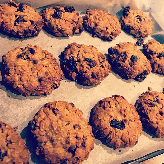 オートミールクッキー(レーズン&チョコ)の販売再開しましたー。長らくお待たせしてすみませんレーズンもチョコもオートミールもピーナッツクリームも全部、オーガニックという贅沢なクッキー。#ヘルシースイーツ #上尾カフェ #焼きたて #オートミール #クッキー (Instagram)