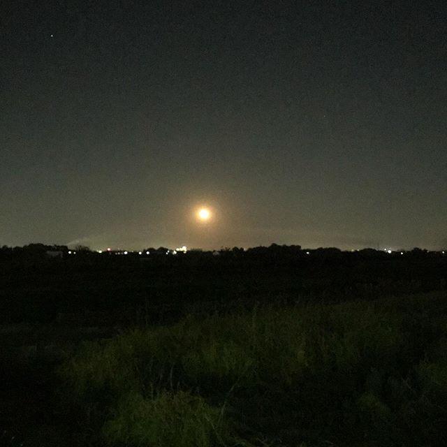 昨日の月と今日の月満月ではないけど、目にとまった月だったので。昨日は雲の合間に見え隠れする陰影が綺麗で、今日はややオレンジ色の大きめな、一瞬目を奪われてしまうような、そんな月でした。#満月 #月 #夜空 #加工なし (Instagram)