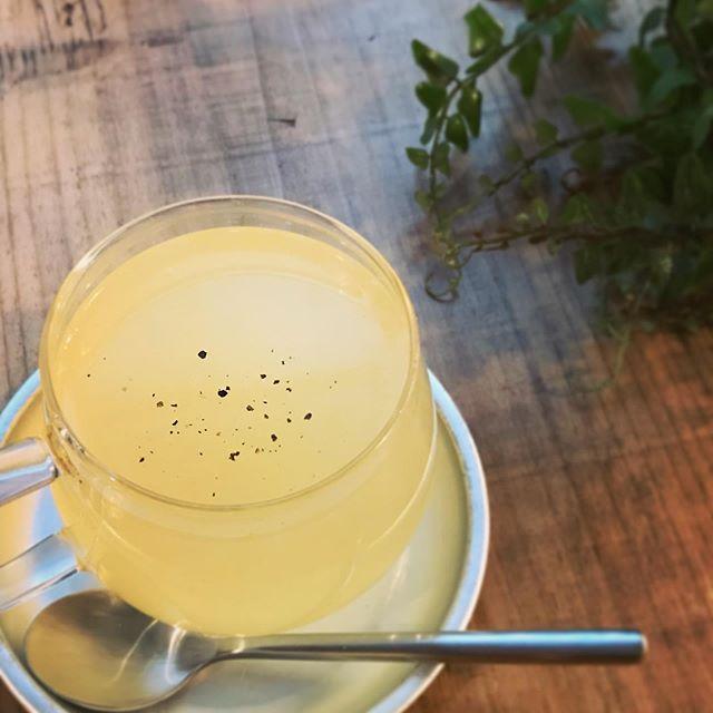 柚子蜂蜜&ハーブティー今週からスタートです。身体を温めて風邪予防を目的にエキナセアとエルダーフラワーとブラックペッパーをブレンドした自家製柚子蜂蜜ティーです。本当にあったまります〜。 #ポカポカ #柚子 #自家製ドリンク #風邪予防 #身体を温める #蜂蜜柚子茶 #ゆず茶 (Instagram)