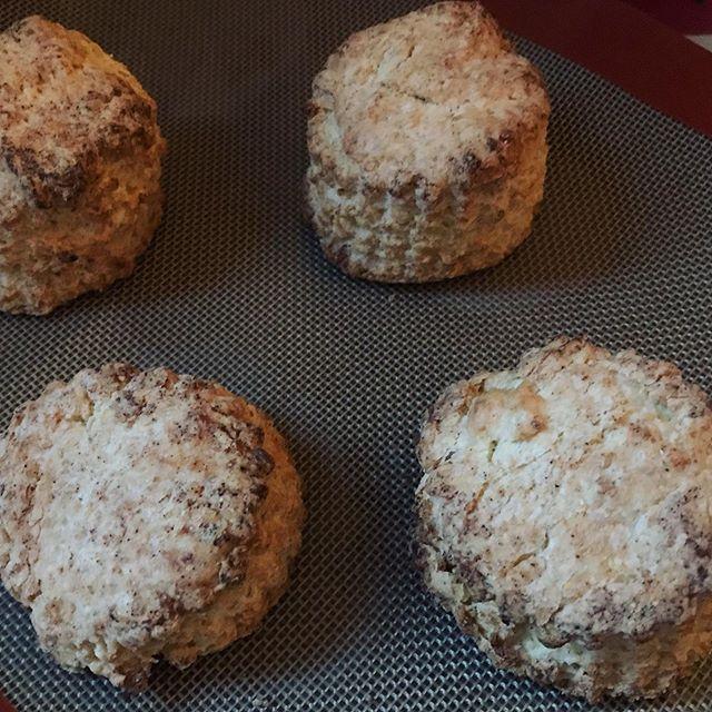ココナッツスコーン by ヴィーガン甘い香り漂うココナッツとコーンミールのスコーン。卵乳製品不使用だけど、サクサクで美味しいスコーンは葉の園でも人気のお菓子です。毎日少しずつ焼いています。お早めにどうぞ。#スコーン #ヴィーガン #ヴィーガンスイーツ #ココナッツ #scones #上尾カフェ (Instagram)