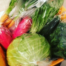 農薬不使用のお野菜をみて