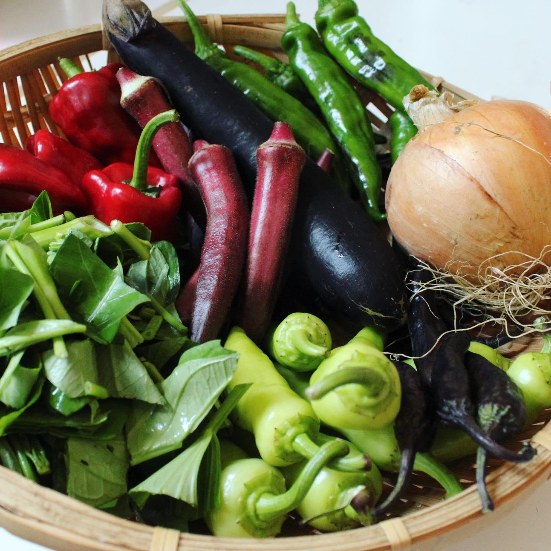 選べるお惣菜のひとつ、夏野菜のカレー炒め炒めは人気のお惣菜ですが、もう夏は終わりだから「旬の野菜のカレー炒め」にしようかなと。このカレー炒めの野菜。無農薬野菜、こんなにたくさん使っています。お昼のご飯の野菜不足にはとってもオススメ。まぁ、オーダーいただいてから、ザクッと掴んでフライパンで炒めるから、入らない野菜もありますが。笑。今日葉の園で使っている野菜、いろいろ組み合わせて食べると15種くらいになるんじゃないかなぁ。。それにハーブティーも一緒に飲んでいただけたら、尚良し。