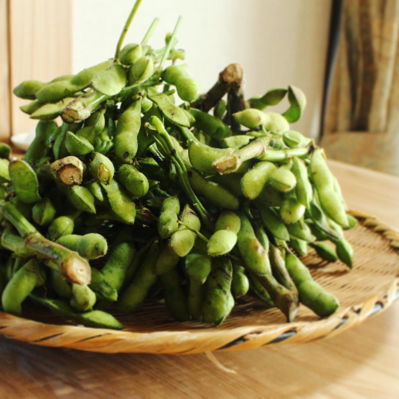 落花生の季節ですね。野菜をさわっている時が割と好きついでにトマトの湯むきも割と好き
